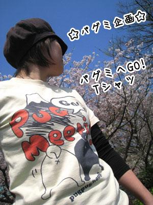 パグミシャツ001