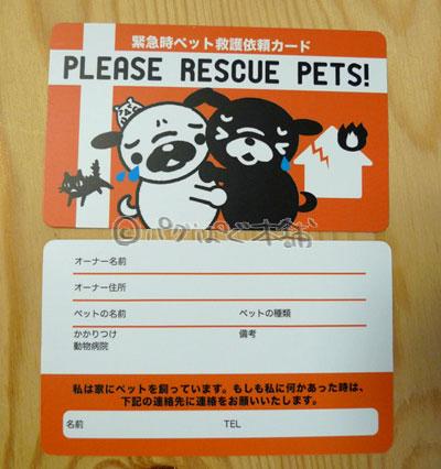 画像1: レスキューカード