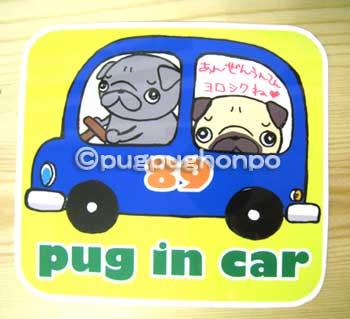 画像1: PUG IN CAR